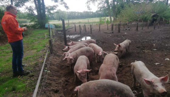 Bezoek Herenboerderij Boxtel