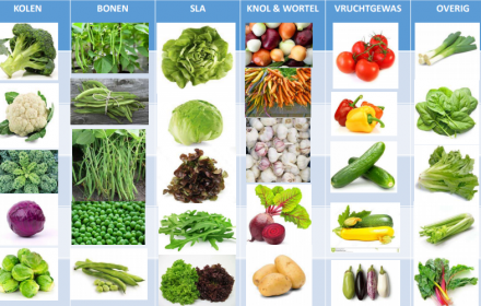 Favoriete groenten leden